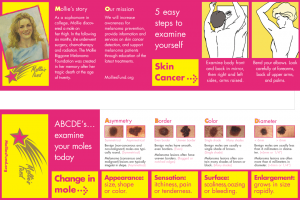 Have You Checked Your Skin Lately Brochure
